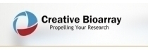 Innovation of Creative Bioarray /