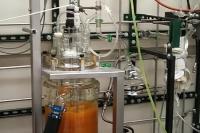 Soy-PK: Bio-Based Alternative to Epoxy Resins