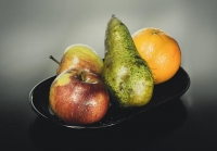 Seeking whole fruit and vegetable shelf-life extension edible coatings formulation expertise
