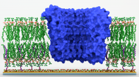 Enabling technology platform to study proteins in membranes