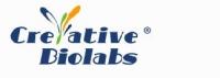 De Novo Antibody Sequencing Services