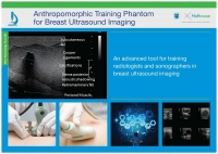 Anthropomorphic Training Phantom for Breast Ultrasound Imaging